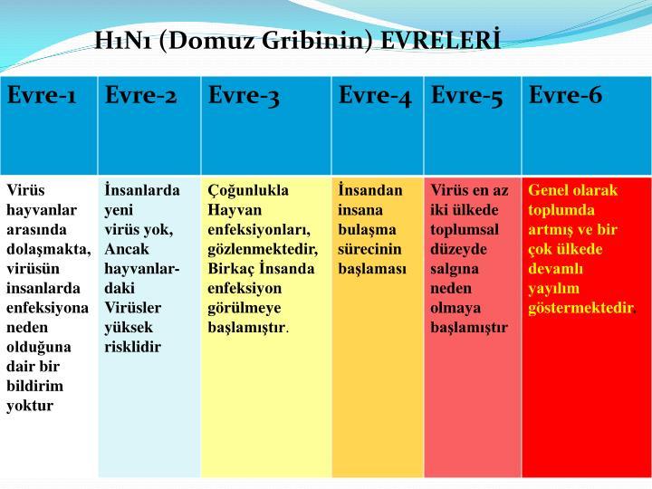 H1N1 (Domuz Gribinin) EVRELERİ