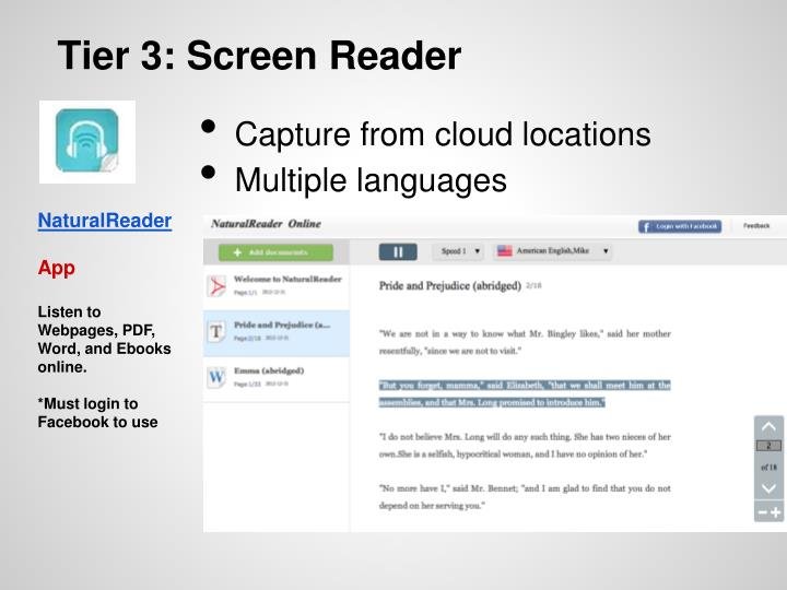 Tier 3: Screen Reader