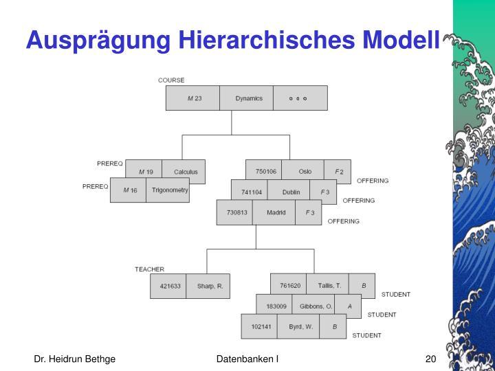 Ausprägung Hierarchisches Modell