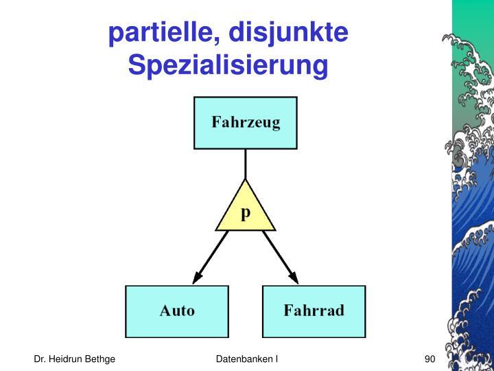 partielle, disjunkte Spezialisierung