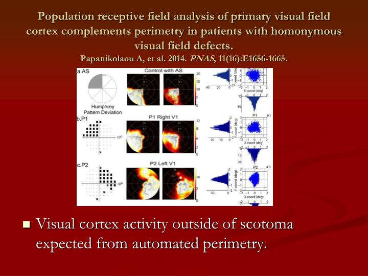 Population receptive field analysis of primary visual field cortex complements perimetry in patients with homonymous visual field defects.