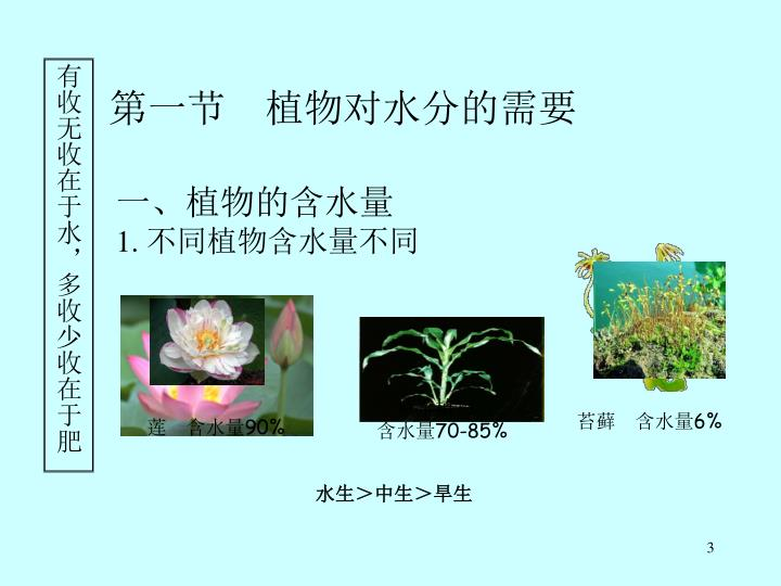 一、植物的含水量
