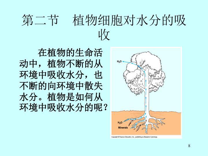 第二节 植物细胞对水分的吸收