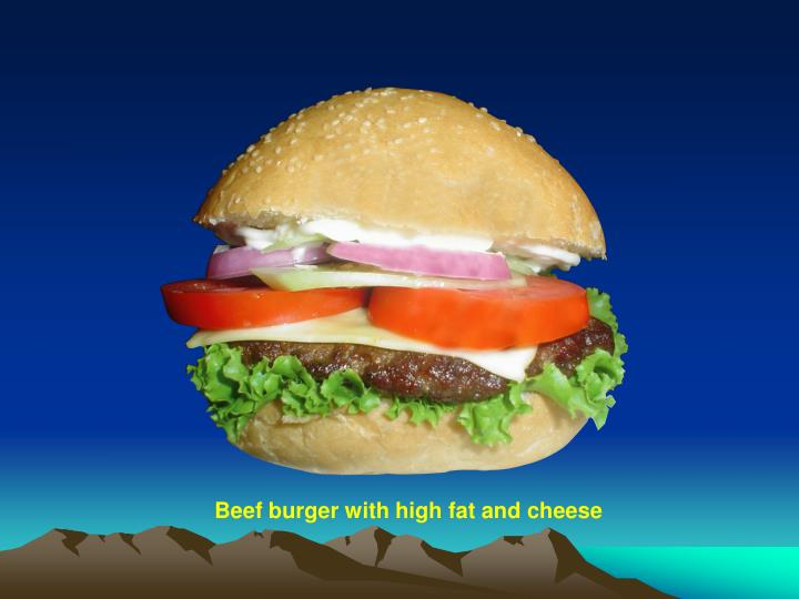 Beef burger with high fat and cheese