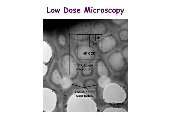Low Dose Microscopy