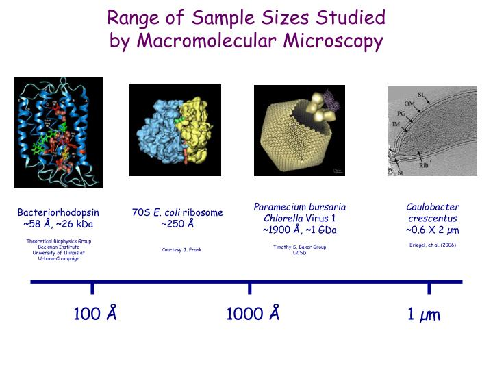 Range of Sample Sizes Studied