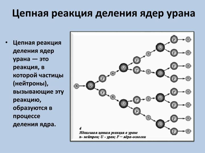 Цепная реакция деления ядер урана