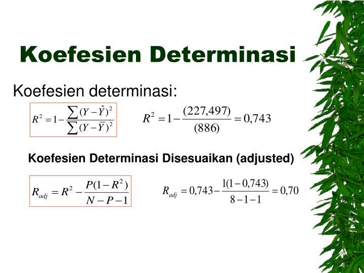 Koefesien Determinasi