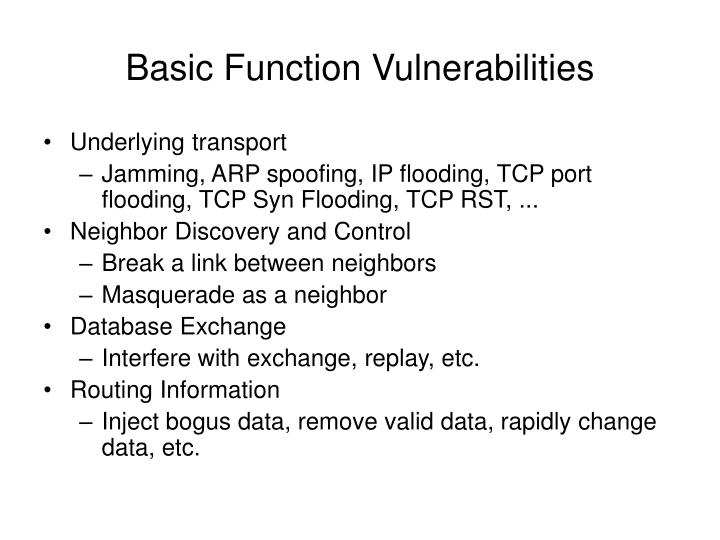 Basic Function Vulnerabilities