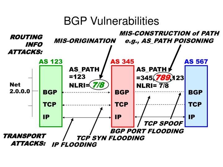BGP Vulnerabilities