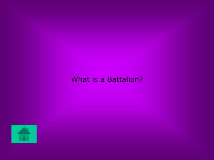 What is a Battalion?