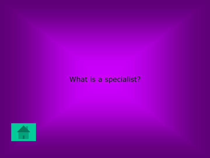 What is a specialist?