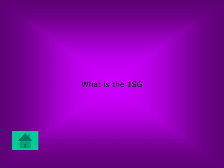 What is the 1SG