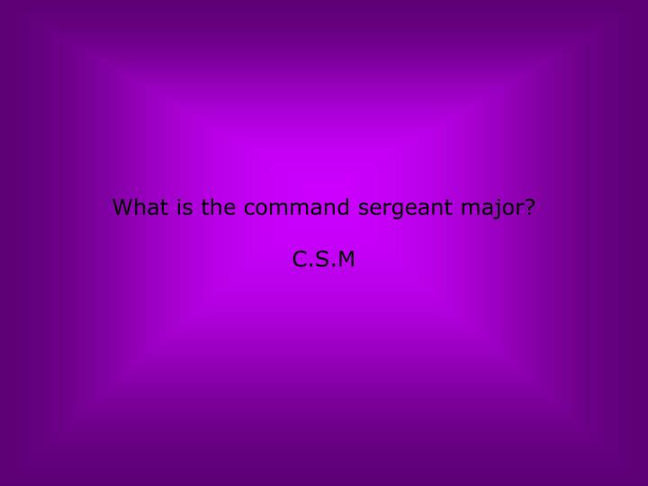 What is the command sergeant major?