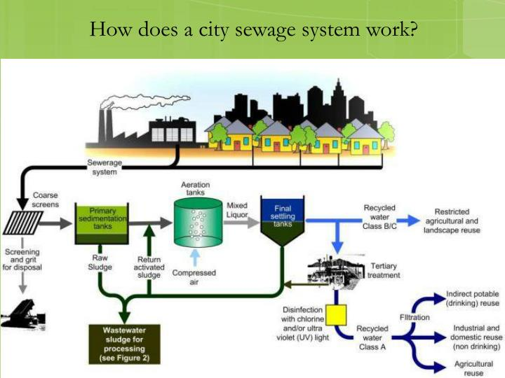 How does a city sewage system work?