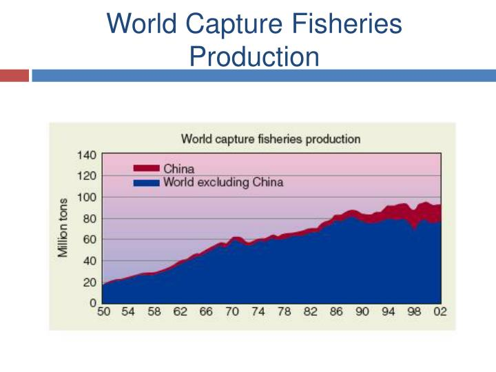 World Capture Fisheries