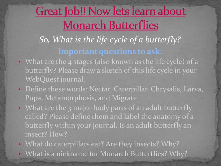 Great Job!! Now lets learn about Monarch Butterflies