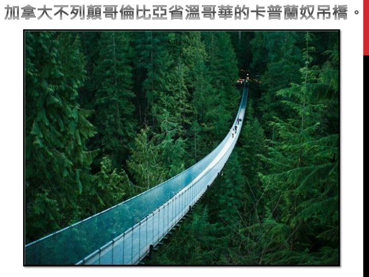 加拿大不列顛哥倫比亞省溫哥華的卡普蘭奴吊橋。