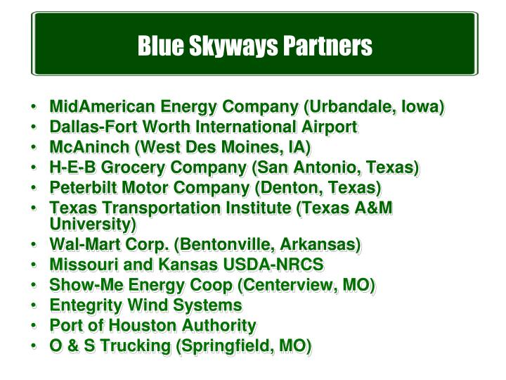 Blue Skyways Partners