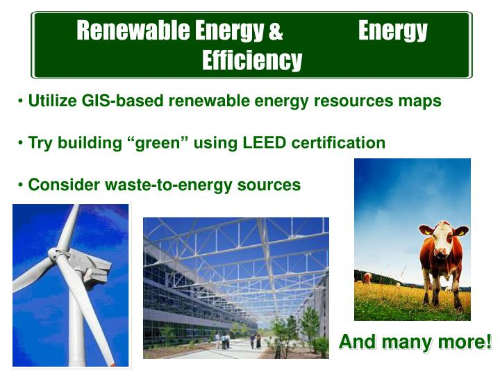 Renewable Energy &                 Energy Efficiency
