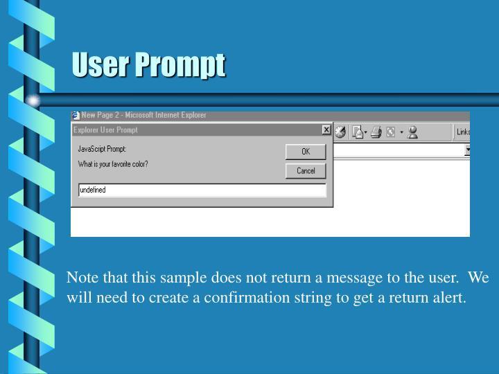 User Prompt