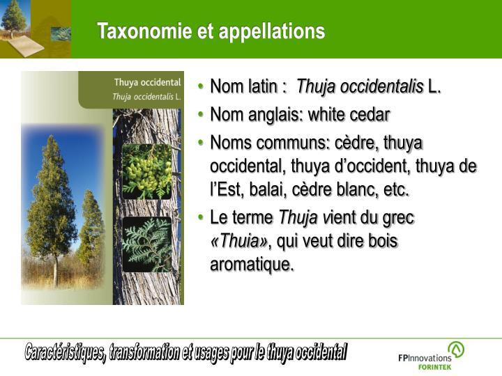 Taxonomie et appellations