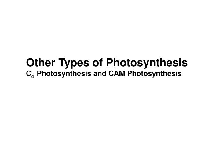Other Types of Photosynthesis