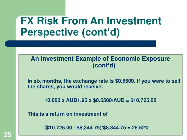 FX Risk From An Investment Perspective (cont'd)