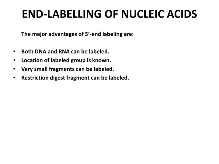 END-LABELLING OF NUCLEIC ACIDS