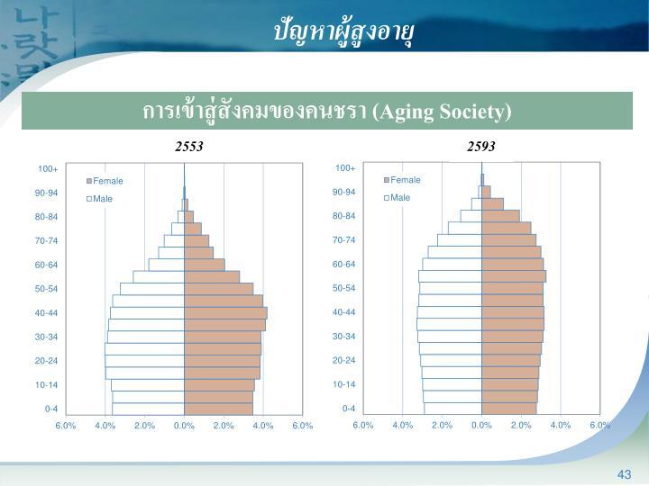 ปัญหาผู้สูงอายุ