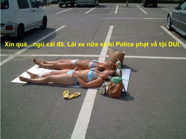 Xỉn quá…ngủ cái đã. Lái xe nữa sẽ bi Police phạt về tội DUI.