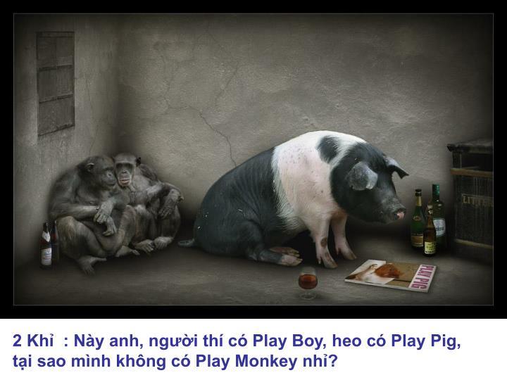 2 Khỉ  : Này anh, người thí có Play Boy, heo có Play Pig,