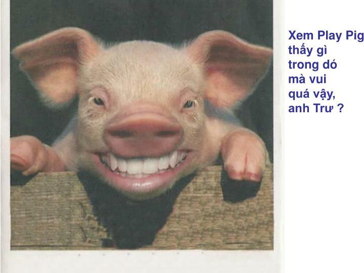 Xem Play Pig