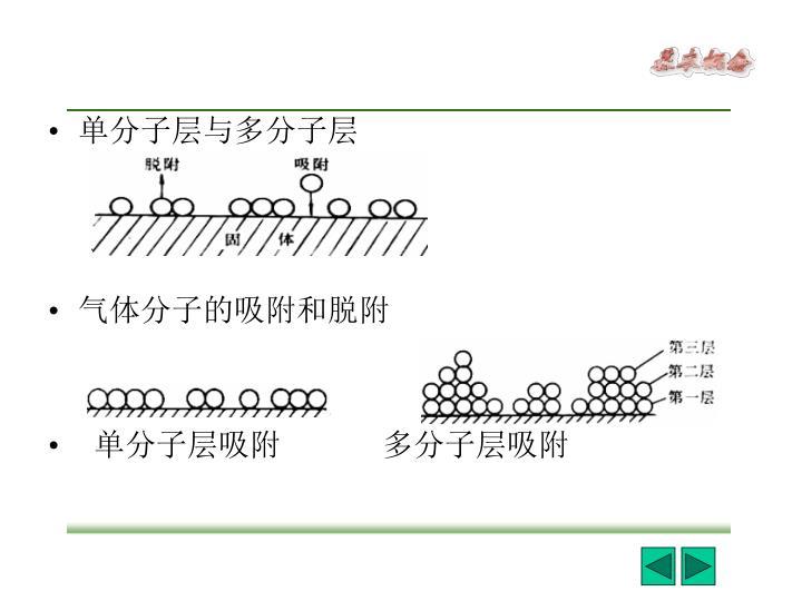 单分子层与多分子层