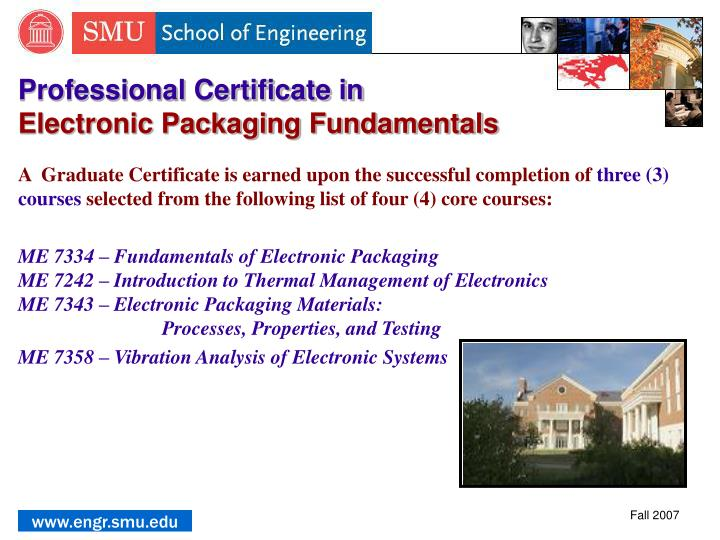 Professional Certificate in
