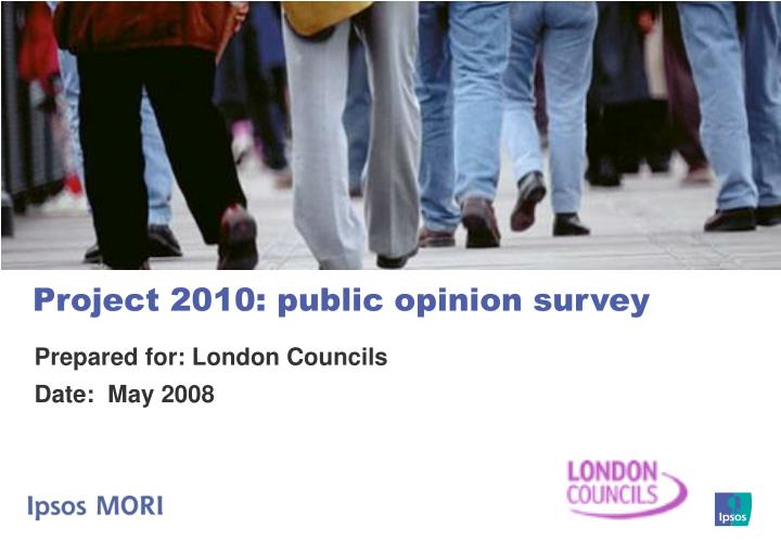 Project 2010 public opinion survey