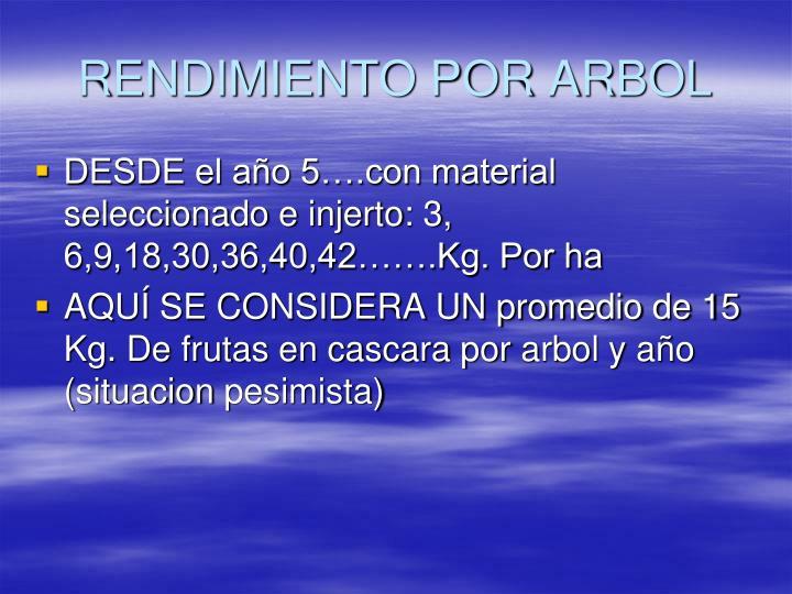 RENDIMIENTO POR ARBOL