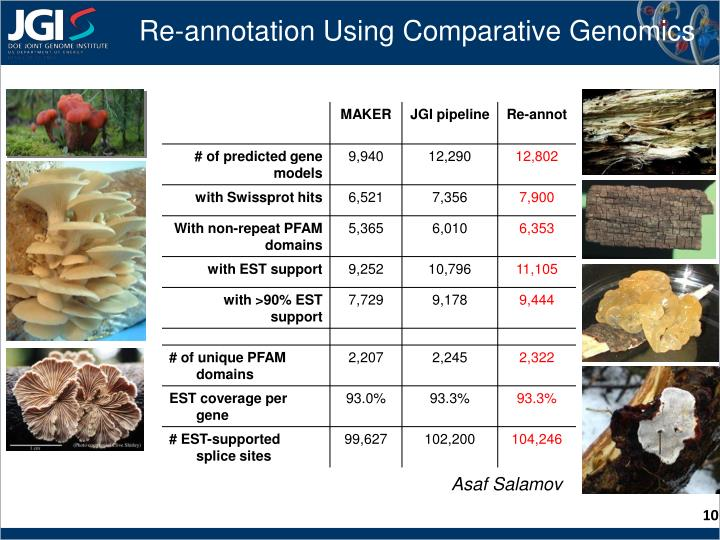 Re-annotation Using Comparative Genomics