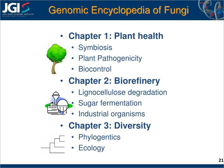 Genomic Encyclopedia of Fungi