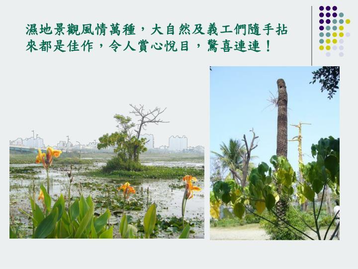 濕地景觀風情萬種,大自然及義工們隨手拈來都是佳作,令人賞心悅目,驚喜連連!