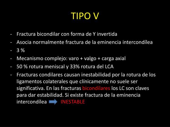 TIPO V