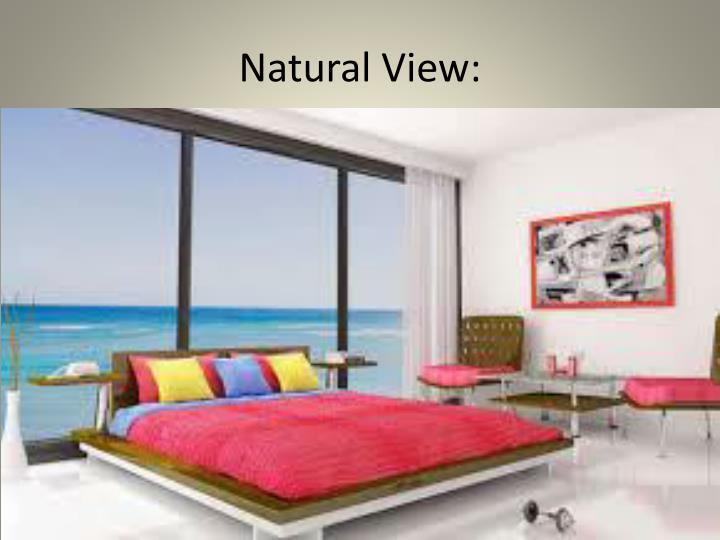 Natural View: