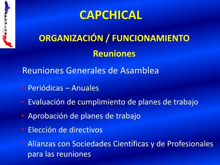 ORGANIZACIÓN / FUNCIONAMIENTO