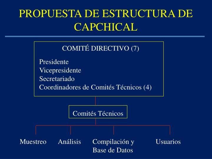 PROPUESTA DE ESTRUCTURA DE