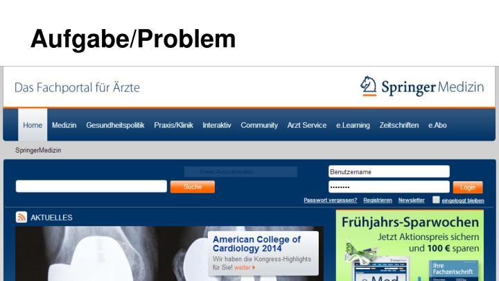 Aufgabe/Problem