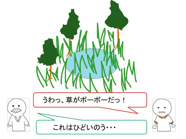 うわっ、草がボーボーだっ!