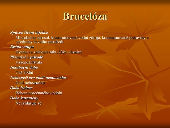 Brucelóza