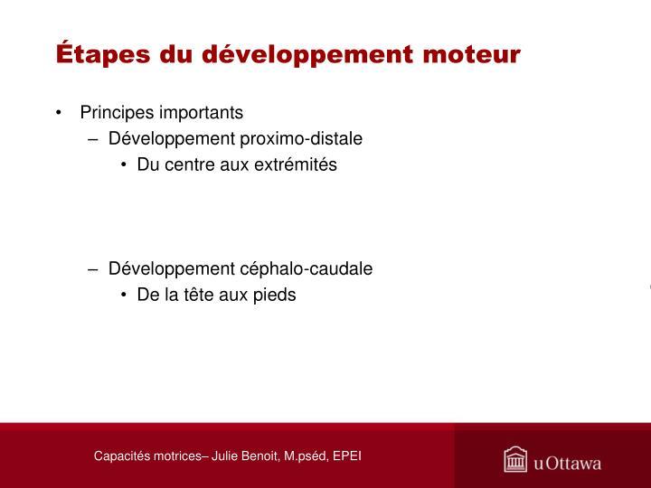 Étapes du développement moteur