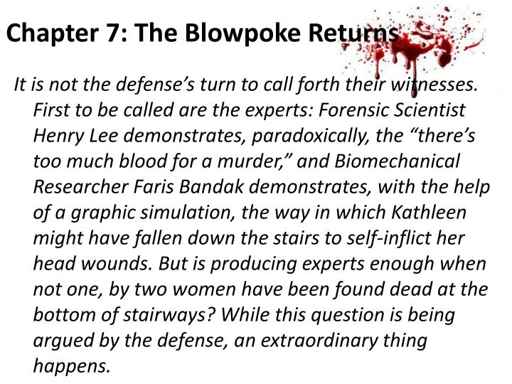 Chapter 7: The Blowpoke Returns