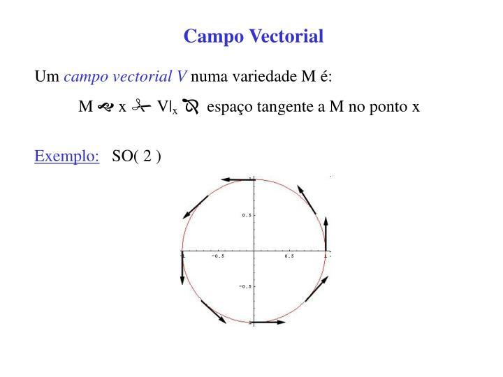 Campo Vectorial